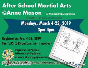 After School Martial Arts Anne Mason